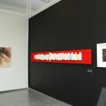 Lapuan Taidemuseo, Empatia-näyttely, yksityiskohta näyttelystä 2014